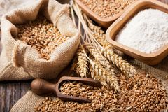 Grains and wheat ears on a wooden table royalty free stock image