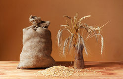 Grains of wheat, jute sack and ceramic vase Royalty Free Stock Photos