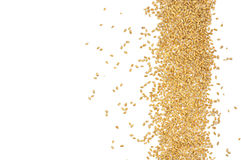Grains of wheat. Rye grain spilled, perfect for background Royalty Free Stock Images