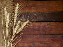 Grains of Wheat on weathered wooden background with copy-space.F Royalty Free Stock Photo