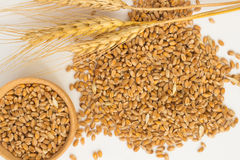 Grains of wheat and wheat spikelets. Top view Stock Photography
