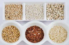Grains on white Royalty Free Stock Image