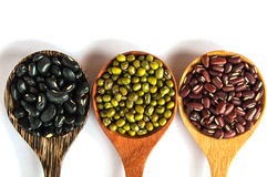 Grains in a wooden spoon. Legumes in a wooden spoon placed on a white background Stock Photo