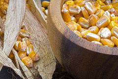 Grains of Yellow Ripe Corn in Wooden Bowl on Rustic Background Stock Images