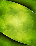 Grainy leaf background Royalty Free Stock Photography