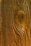 Grainy Pine Board Royalty Free Stock Image