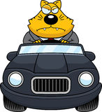 Graisse Cat Driving Angry de bande dessinée illustration de vecteur