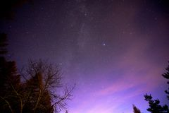 Grająca główna rolę noc w lesie przy półmrokiem Fotografia Royalty Free