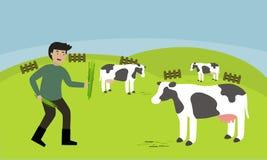 Gramíneas forrajeras del granjero para las vacas Foto de archivo libre de regalías