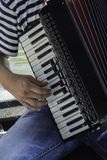gram akordeonu zdjęcia royalty free