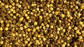 Gram peas texture Royalty Free Stock Photography