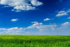 A grama é sempre mais verde Foto de Stock Royalty Free