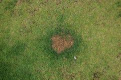 A grama é uma caixa dada forma coração exceto, represa de Kaeng Krachan em Petchaburi Foto de Stock
