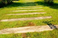 Grama artificial da escadaria com de madeira Fotos de Stock Royalty Free