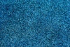 Fundo azul da grama Fotos de Stock