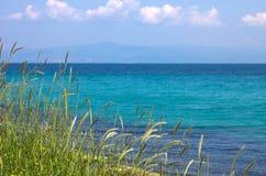 Grama, céu azul da American National Standard do mar Imagens de Stock Royalty Free