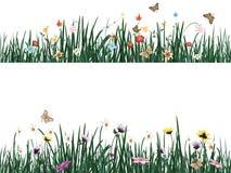 Grama com flores e borboletas Ilustração do vetor Foto de Stock