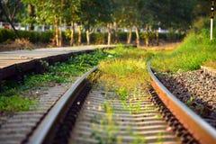 A grama cresce ao lado da estrada de ferro quando não tenha nenhum trem em nivelar o li imagens de stock royalty free