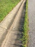 A grama cresce ao longo do freio fotografia de stock