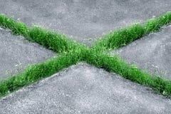 A grama cresce através da lona do asfalto sob a forma de uma cruz fotos de stock