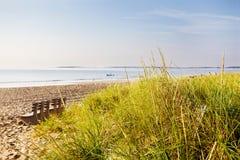 A grama da duna escapa a cerca Imagens de Stock Royalty Free