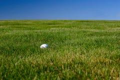 Grama da esfera de golfe Fotografia de Stock Royalty Free
