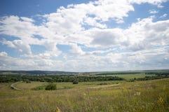 Grama da paisagem do céu da sementeira da estrada do trigo do campo da agricultura Imagem de Stock