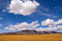 Grama de nuvens da neve de China Tibet Imagem de Stock Royalty Free