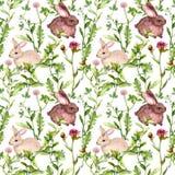 Grama de prado, flores, coelhos Teste padrão sem emenda watercolor ilustração royalty free