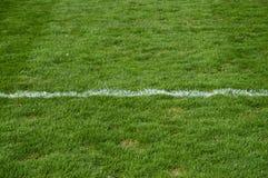 Grama do futebol Imagens de Stock Royalty Free