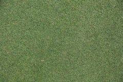 Grama do golfe Imagens de Stock
