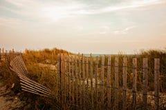 Grama do mar do por do sol Foto de Stock