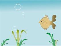Grama dos peixes e do flutuador Ilustração Royalty Free