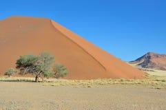 A grama, a duna e a montanha ajardinam perto de Sossusvlei Fotos de Stock Royalty Free
