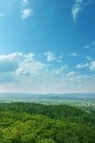 Grama e árvores no céu azul Fotografia de Stock Royalty Free