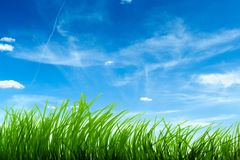 Grama e céu azul Imagens de Stock
