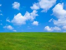 Grama e céu nebuloso Foto de Stock Royalty Free