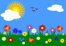 Grama e flores Imagem de Stock Royalty Free