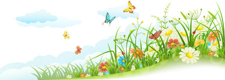 Grama e flores da mola