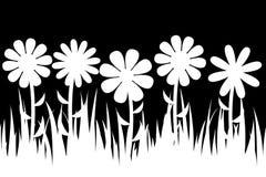 Grama e flores sem emenda da silhueta Fotos de Stock Royalty Free
