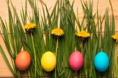 Grama e ovos da páscoa da mola Fotografia de Stock
