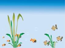 Grama e peixes Ilustração do Vetor
