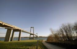 Grama, estrada e ponte de suspensão Fotografia de Stock Royalty Free