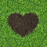 Grama Heart-shaped. fotos de stock royalty free