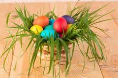 Grama luxúria da mola em uma cesta com ovos da páscoa Fotos de Stock