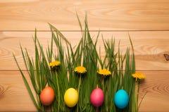 Grama luxúria e dentes-de-leão na composição com ovos da páscoa Fotografia de Stock Royalty Free