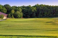 Grama ondulada perfeita em um campo do golfe Fotografia de Stock