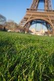 Grama perto da torre Eiffel Fotografia de Stock Royalty Free