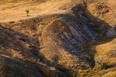 Grama seca que cresce em terras montanhosas Problema da seca Falta da água imagem de stock royalty free
