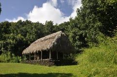 A grama telhou a cabana Fotografia de Stock